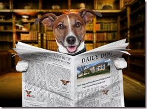 dog, newspaper3