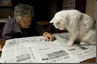 Cat-Grandma-Newspaper_thumb1