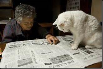 Cat-Grandma-Newspaper_thumb1