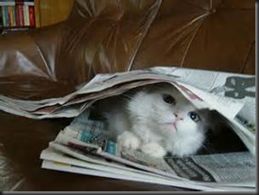 Overwhelmed By News