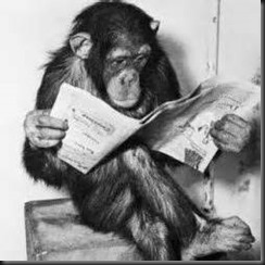 Monkey, Newspaper