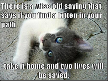 Wise Old Saying