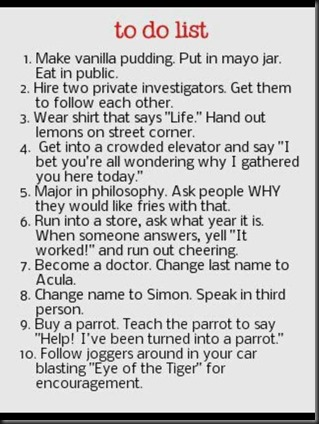 The Crazy To Do List