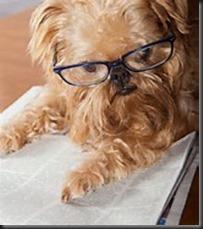 Dog, Glasses, Newspaper