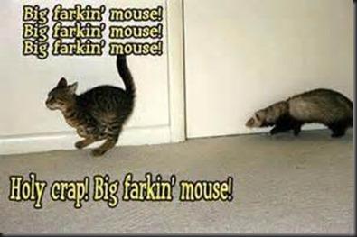 Big Farkin' Mouse