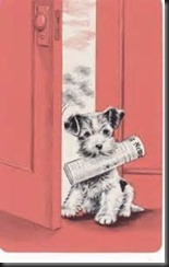 Dog Newspaper