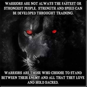 Warriors Are