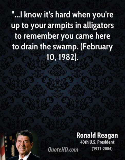 Image result for pics of how to drain a swamp