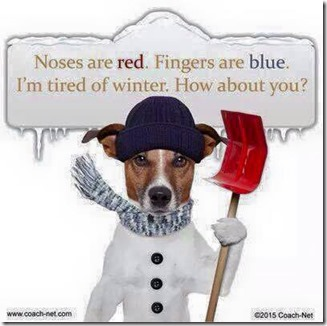 Noses Are Red