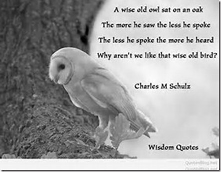 A Wise Old Owl